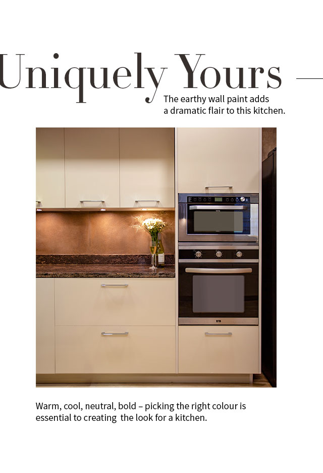 Uniquely Yours | IFB Modular Kitchen Wall Paint