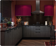 Eclectic | Kitchen Collection - IFB Modular Kitchen