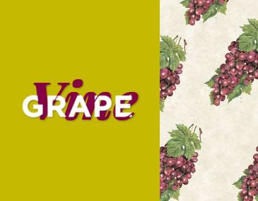 Grape Vine Text aside Red Grapes - IFB Modular Kitchen